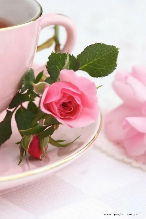 Доброе утро картинка с розами, сыну года
