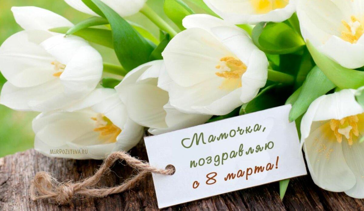 Картинки сдача, видео открытка с 8 марта для мамы