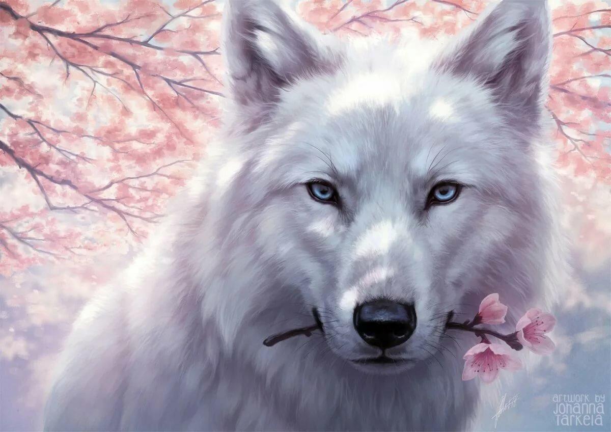 Открытка волчонок