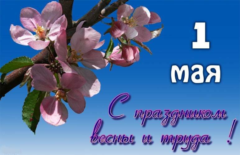 Февраля, открытка с поздравлением на 1 мая 2019