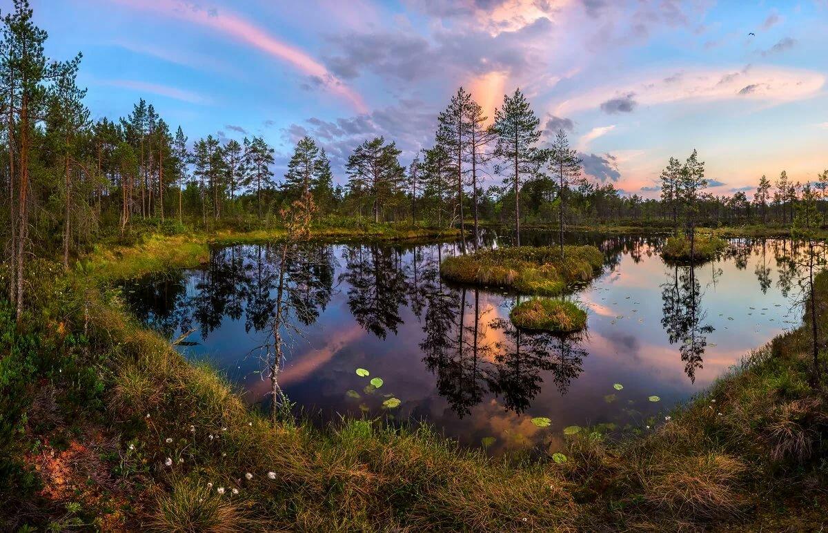 Картинки природа ленин