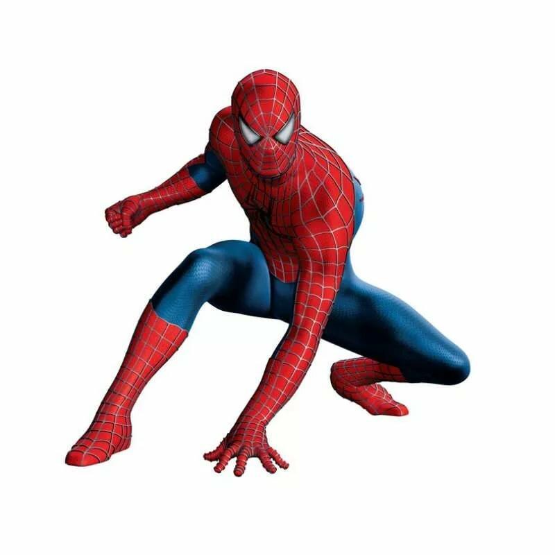всех картинки для торта человек паук для печати разведения немало пользы