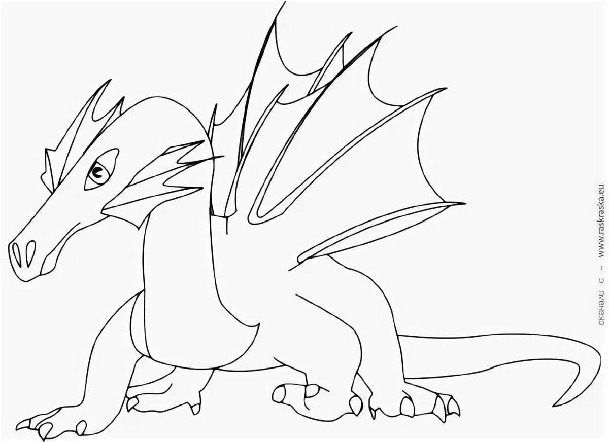 цветной дракон картинка распечатать только