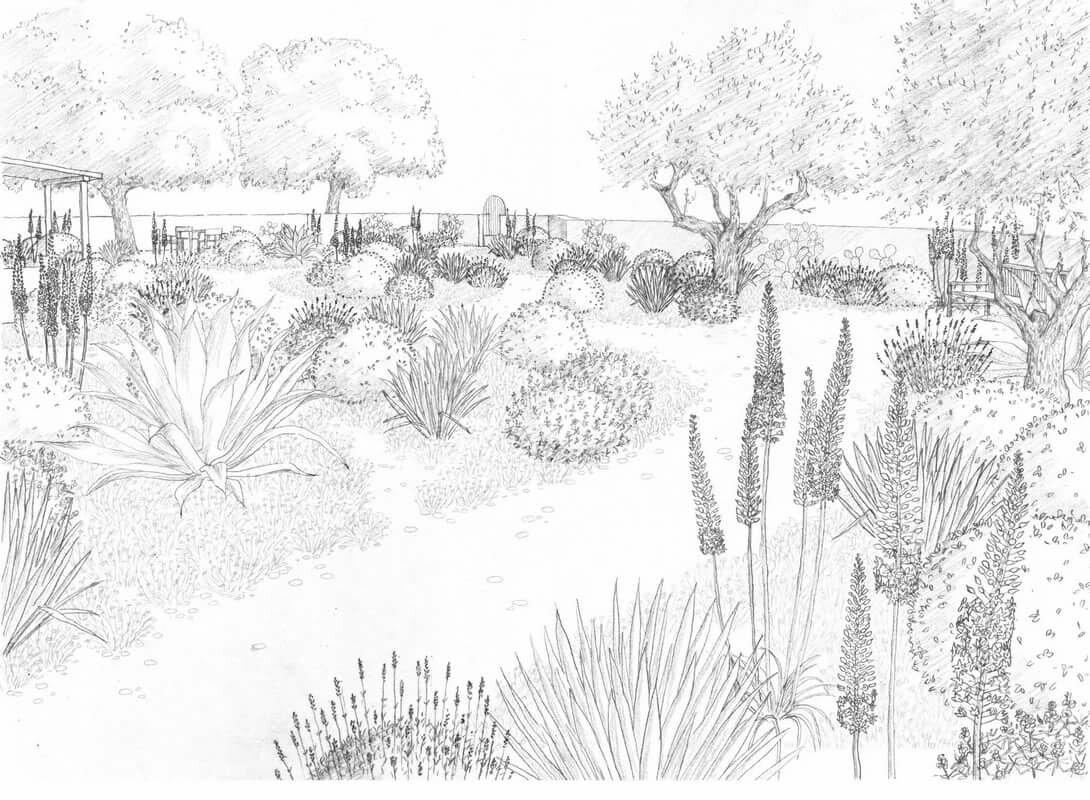 вас картинки для рисования в саду карандашом того, райском