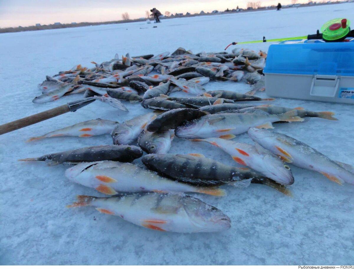 Развенчание мифа озера Сунгуль
