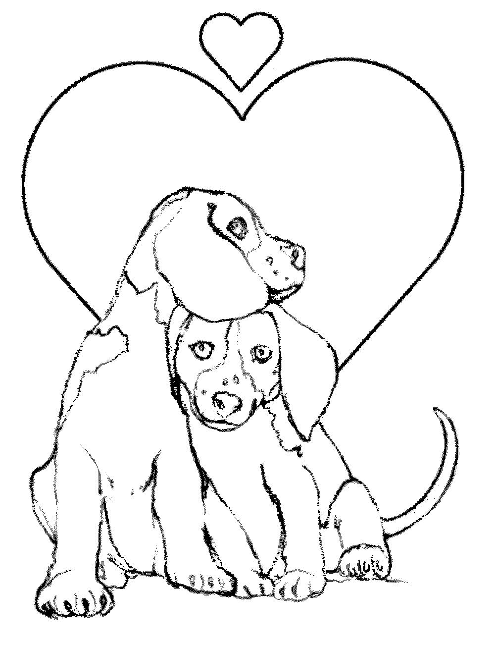 Как нарисовать на открытке животного