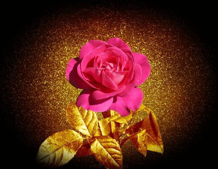 Квиллинг, картинка цветы гифы