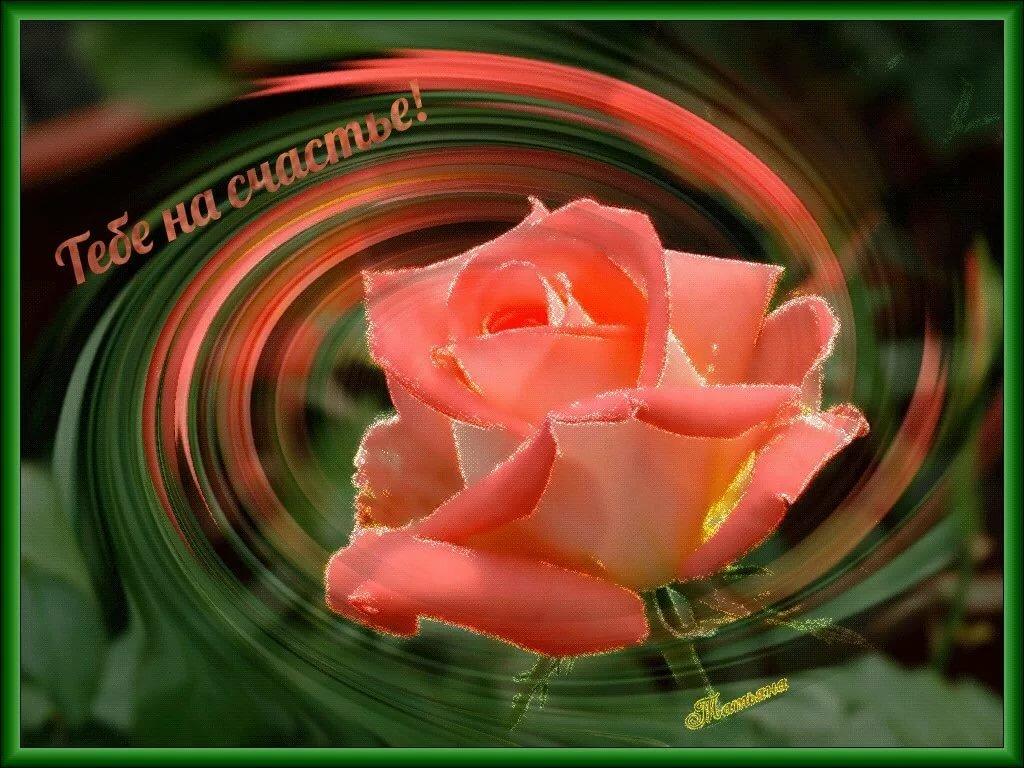 Спокойной, картинки с надписью цветок счастья