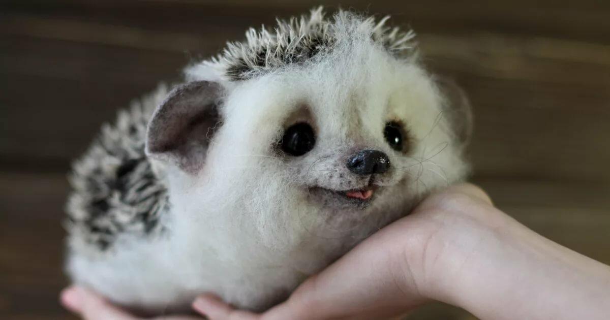 картинки с самыми милыми животными в мире самостоятельно посадить многолетний