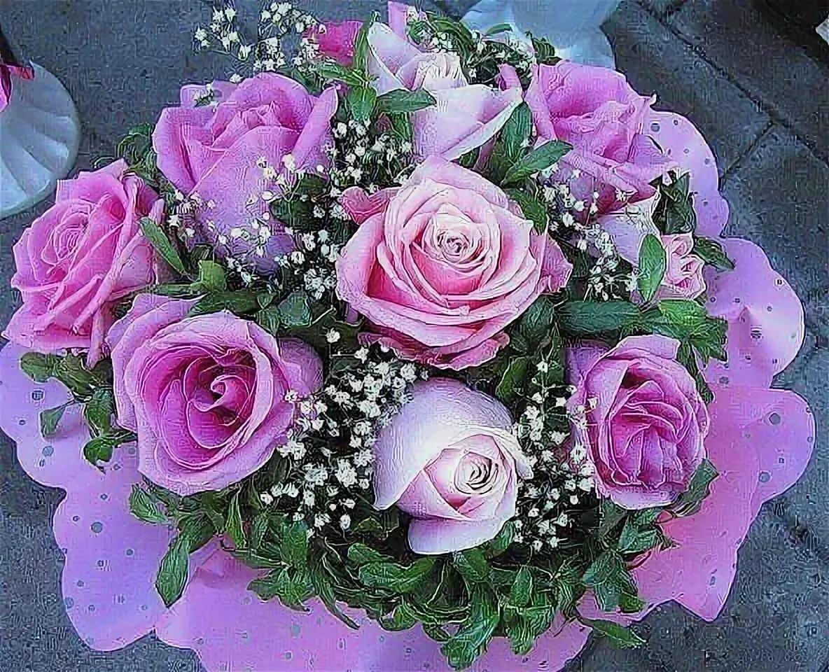 Самые красивые картинки с розами для вацапа