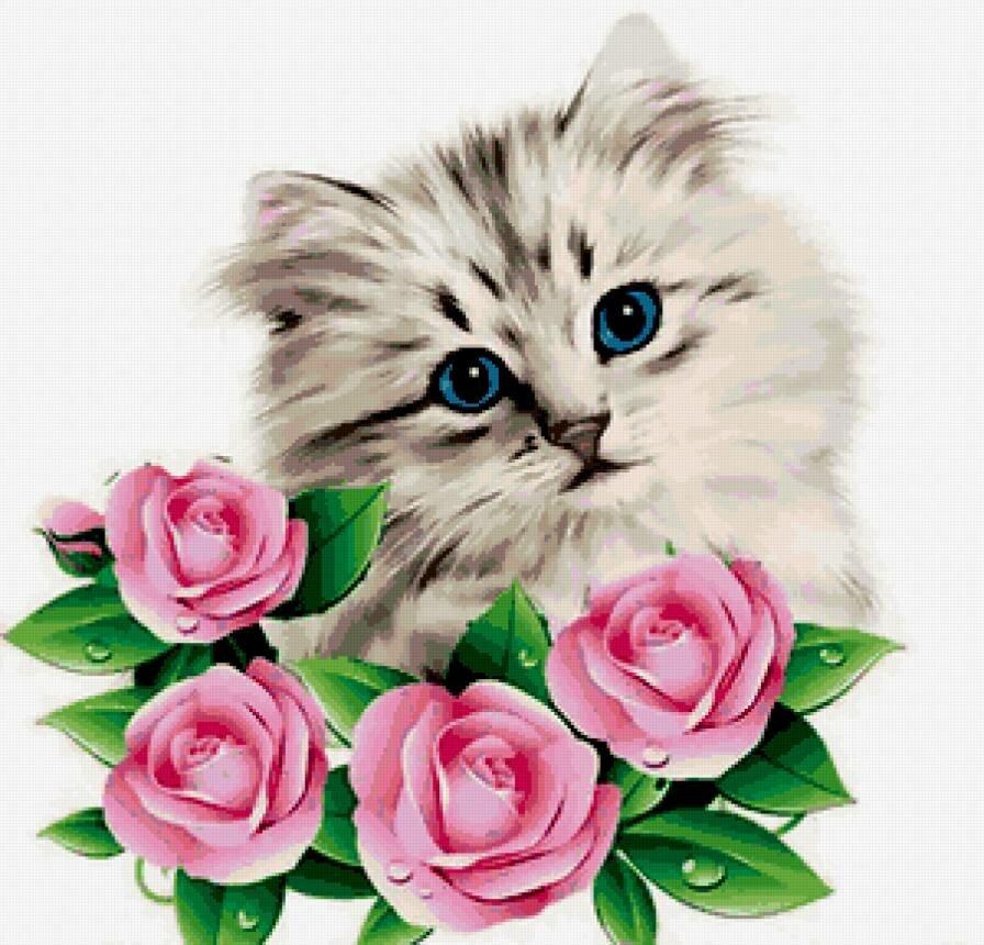 Открытки котики цветы