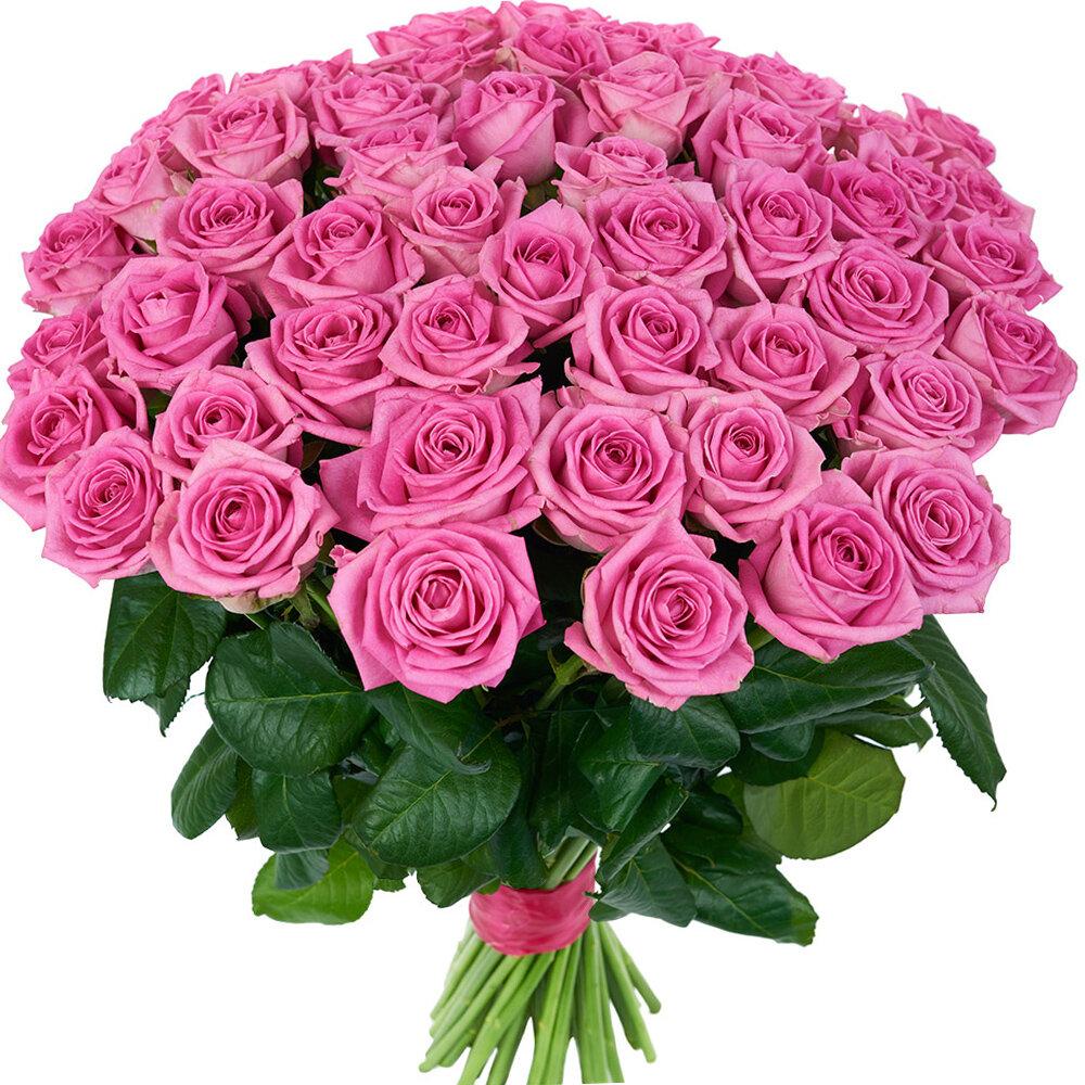 Много розы букет 43
