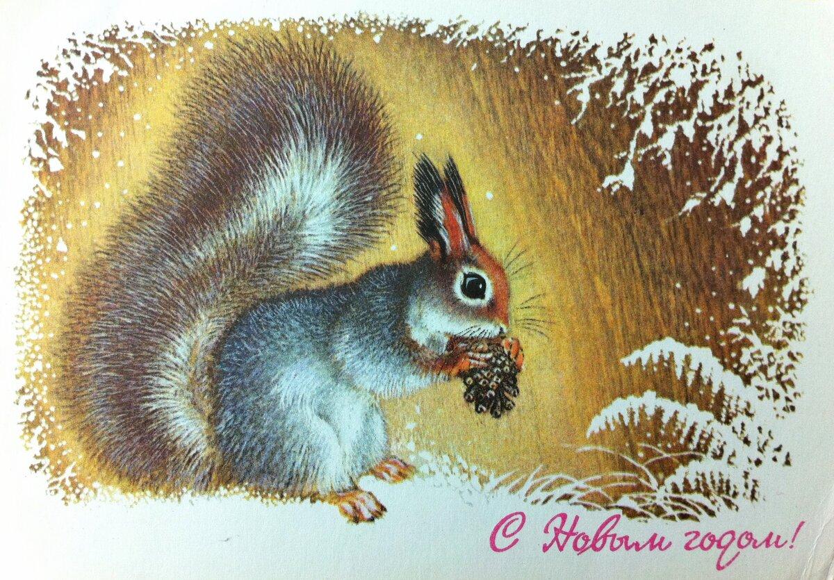 Новогодние открытки белка, картинки детьми маленькими