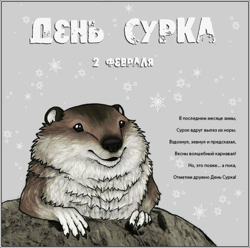 Анимашки, 2 февраля день сурка открытки