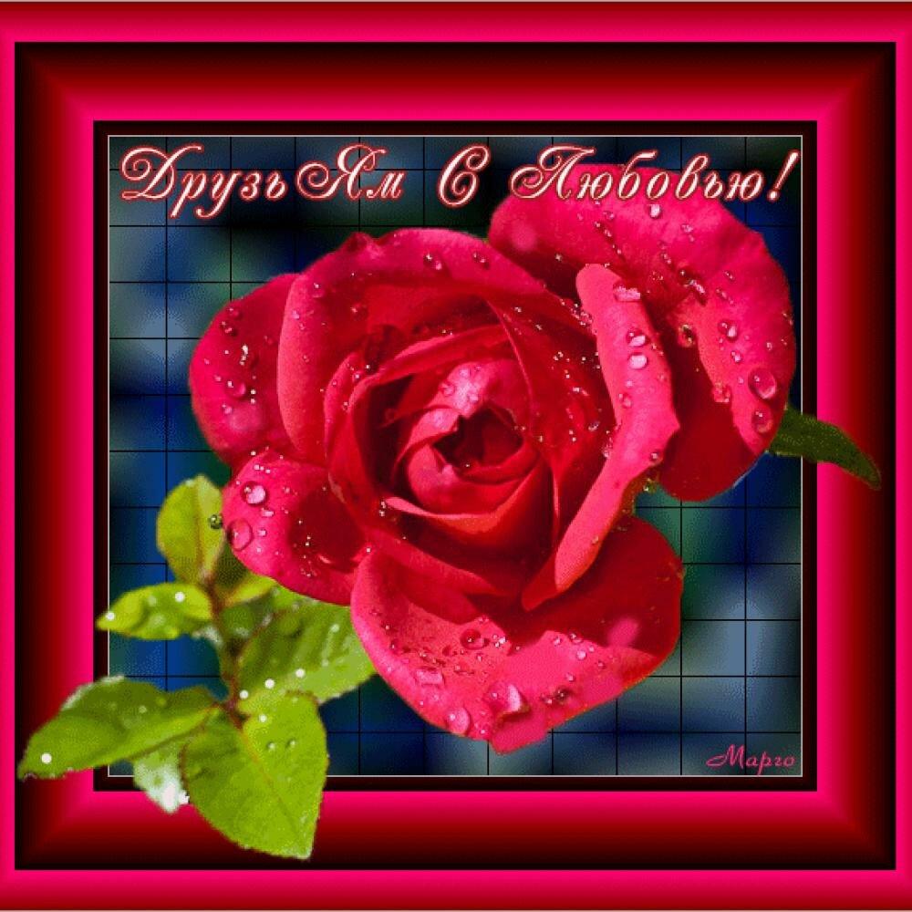 Открытки моим друзьям с любовью цветы