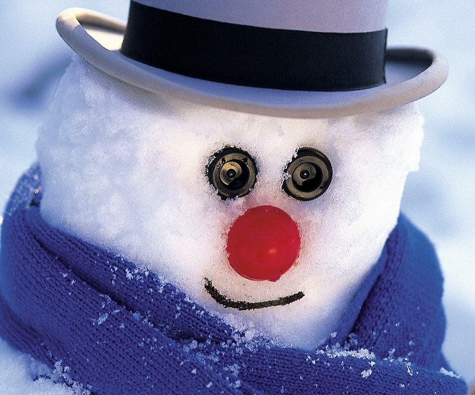 Картинки крутые снеговики, своими