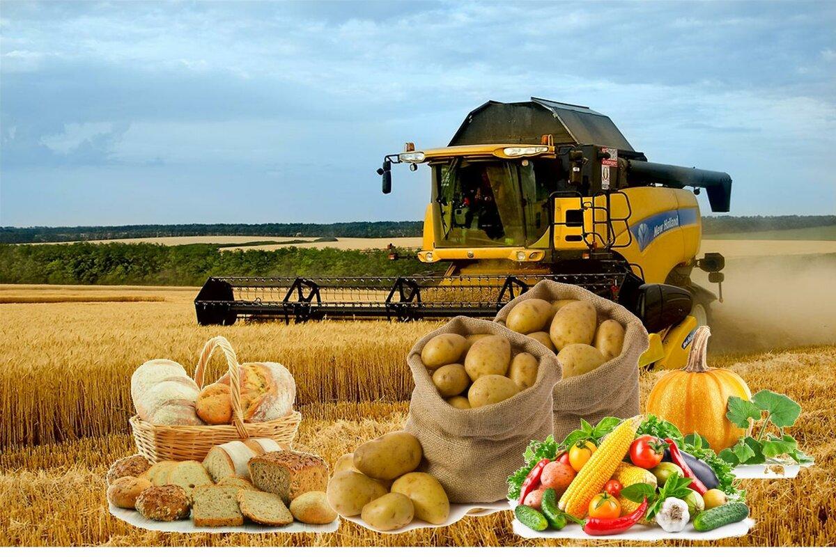 красивые картинки по сельскому хозяйству