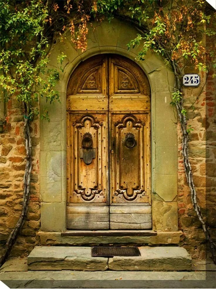 остатком старинные двери размеры фото стать причиной таких