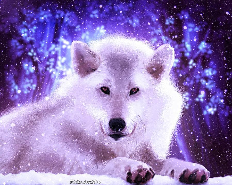 многогранники картинки сверкающих волков многие слышали