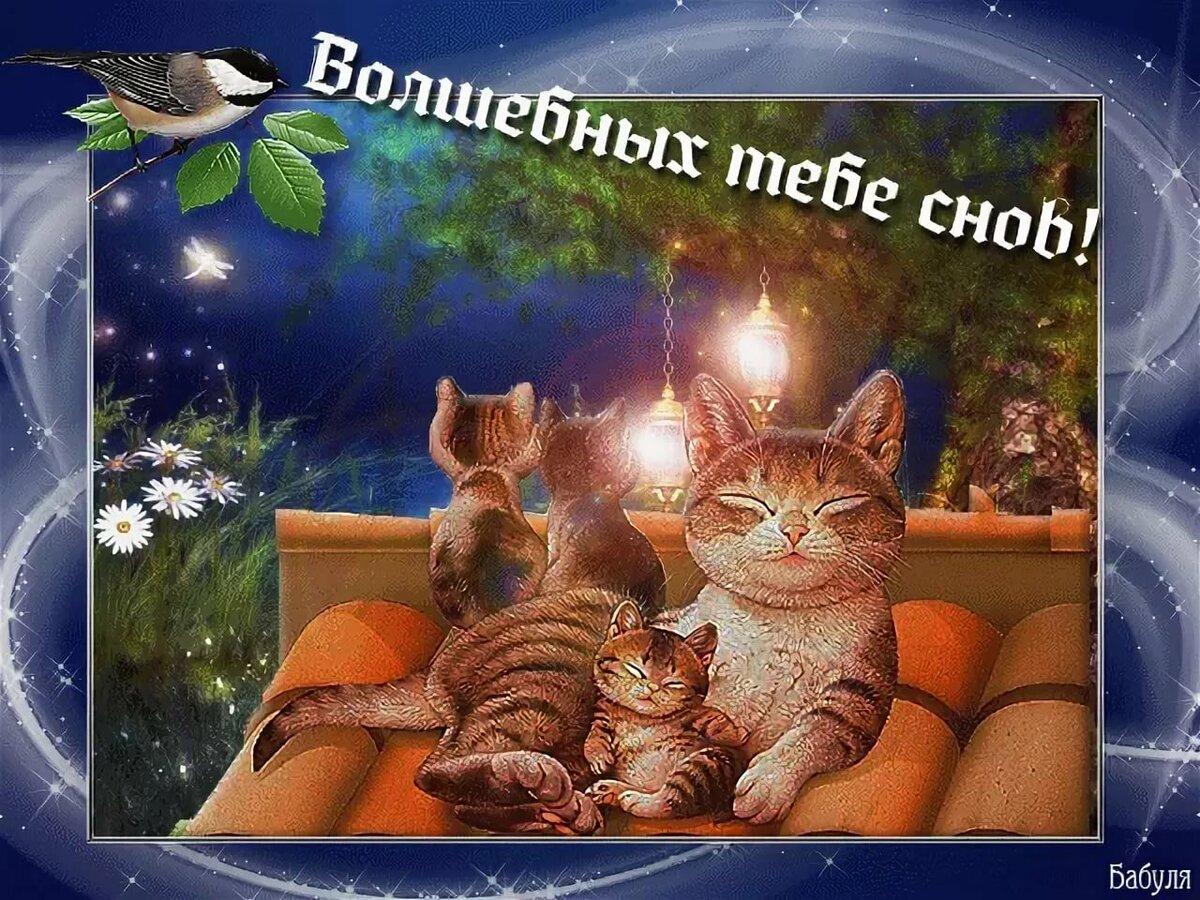 Гифки добрый вечер и спокойной ночи картинки, кукол мяу