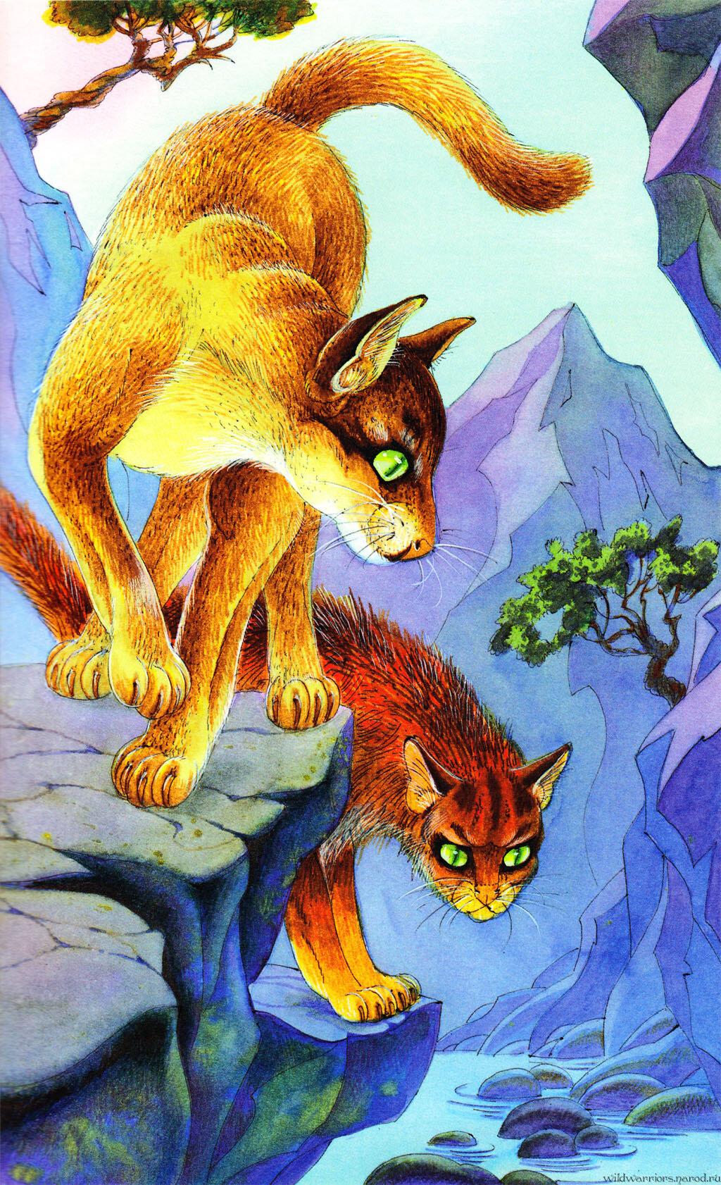 два коты воители герои племен для оформления визитной