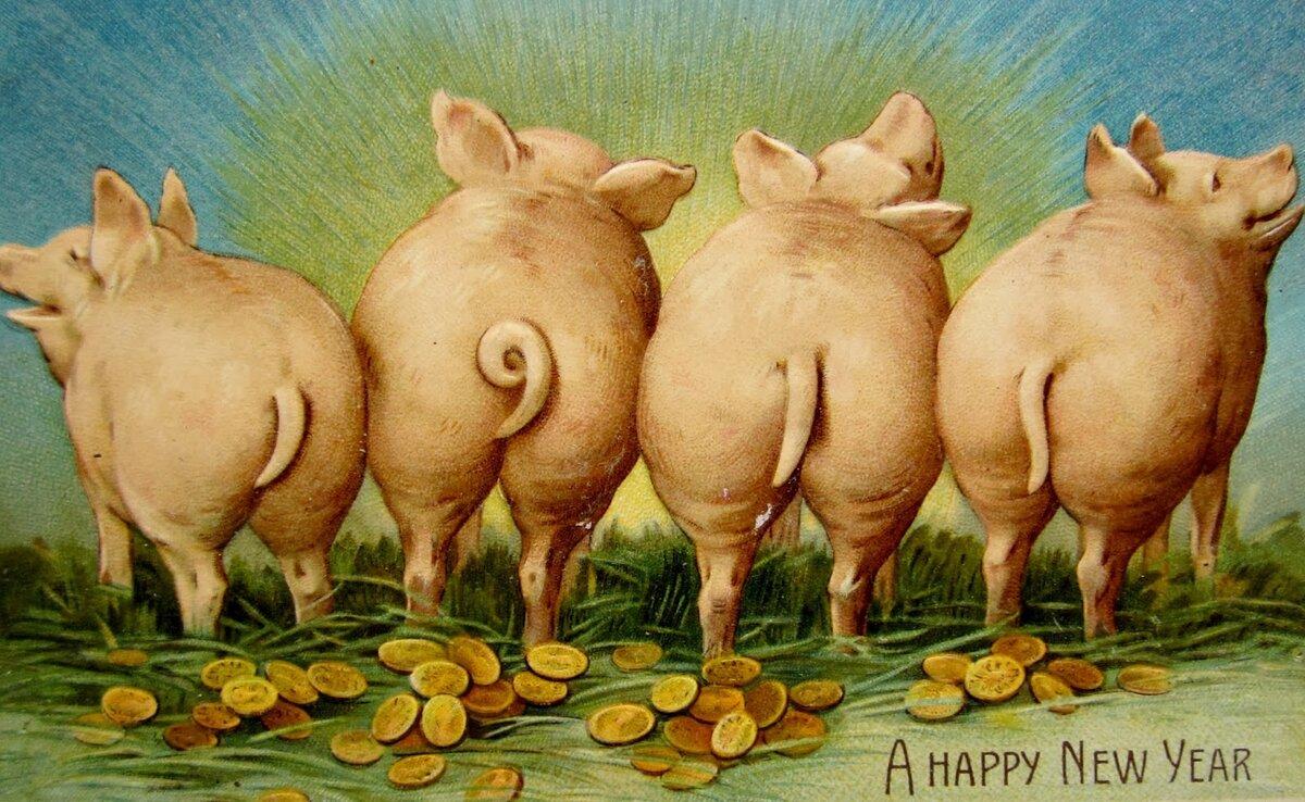 Прикольные открытка с новым годом свиньи, поздравление женщине