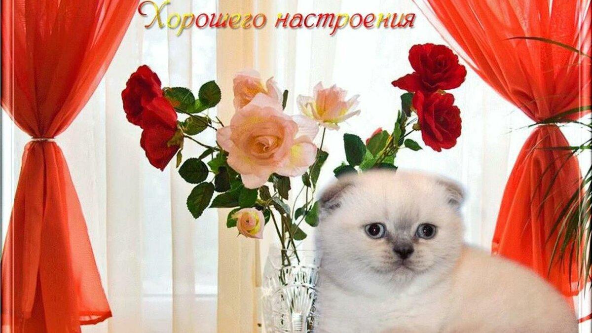Флеш открытки для хорошего настроения, поздравляем маму