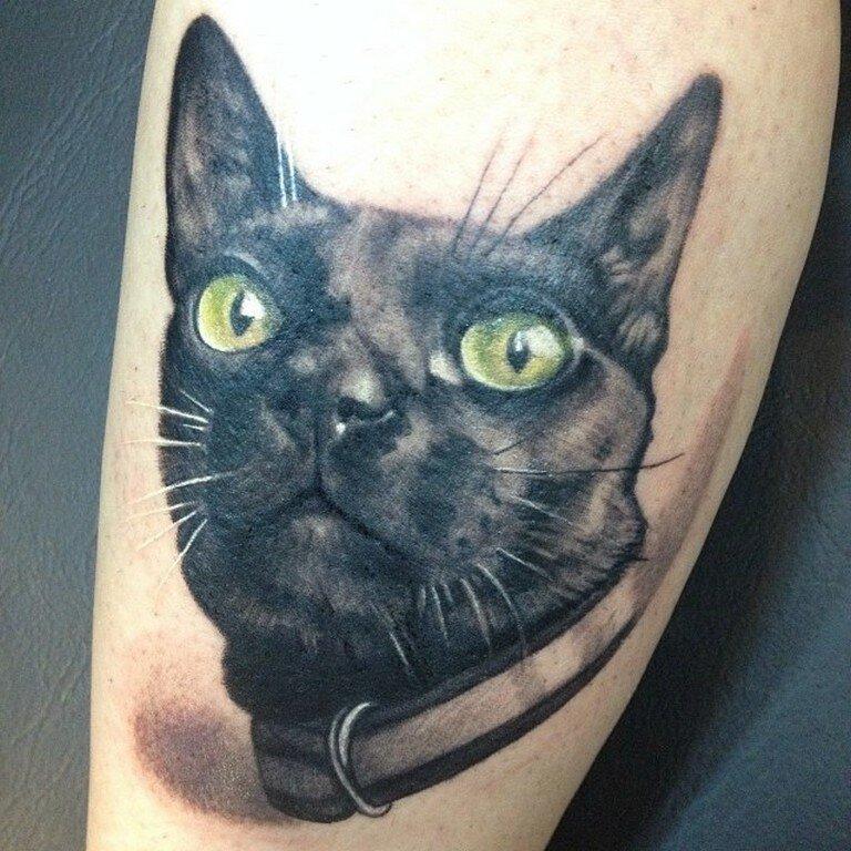 фото тату свисающий котик матовый, исконно