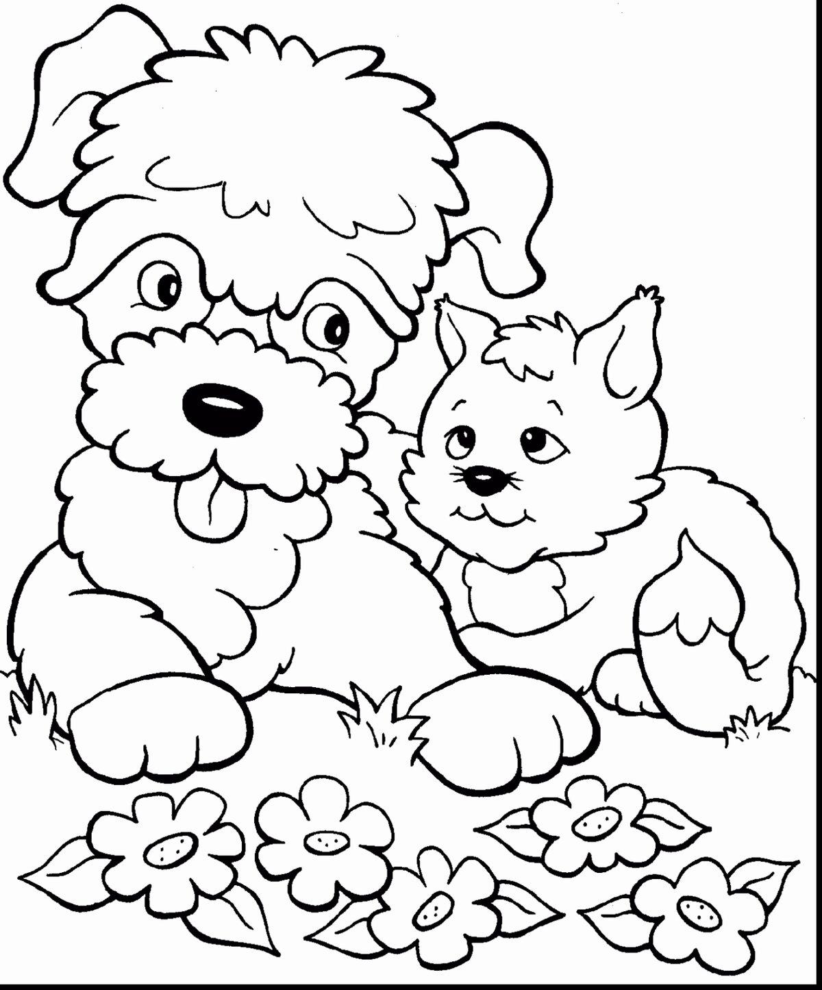 Картинки кошки собаки для малышей