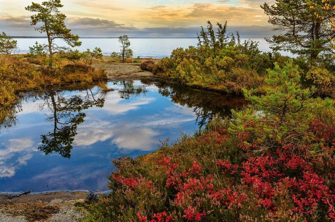 Картинки швеции природа, квиллинг