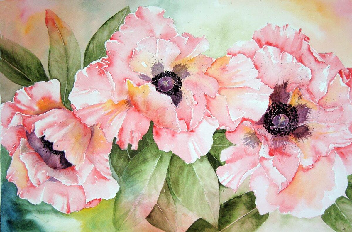 Созданию открыток, картинки с цветами красивые нарисованные акварелью