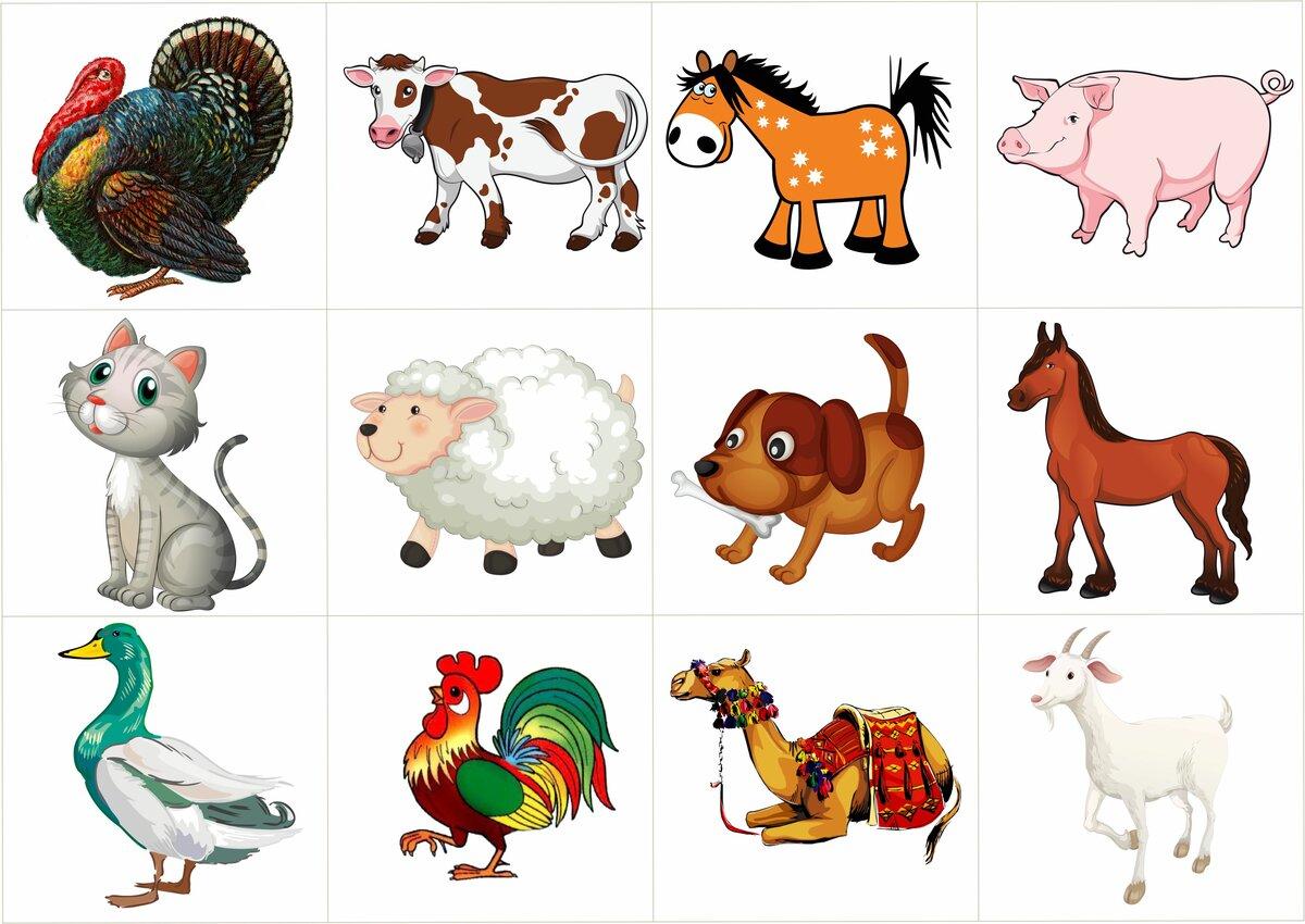 поздравление предметные картинки животным также