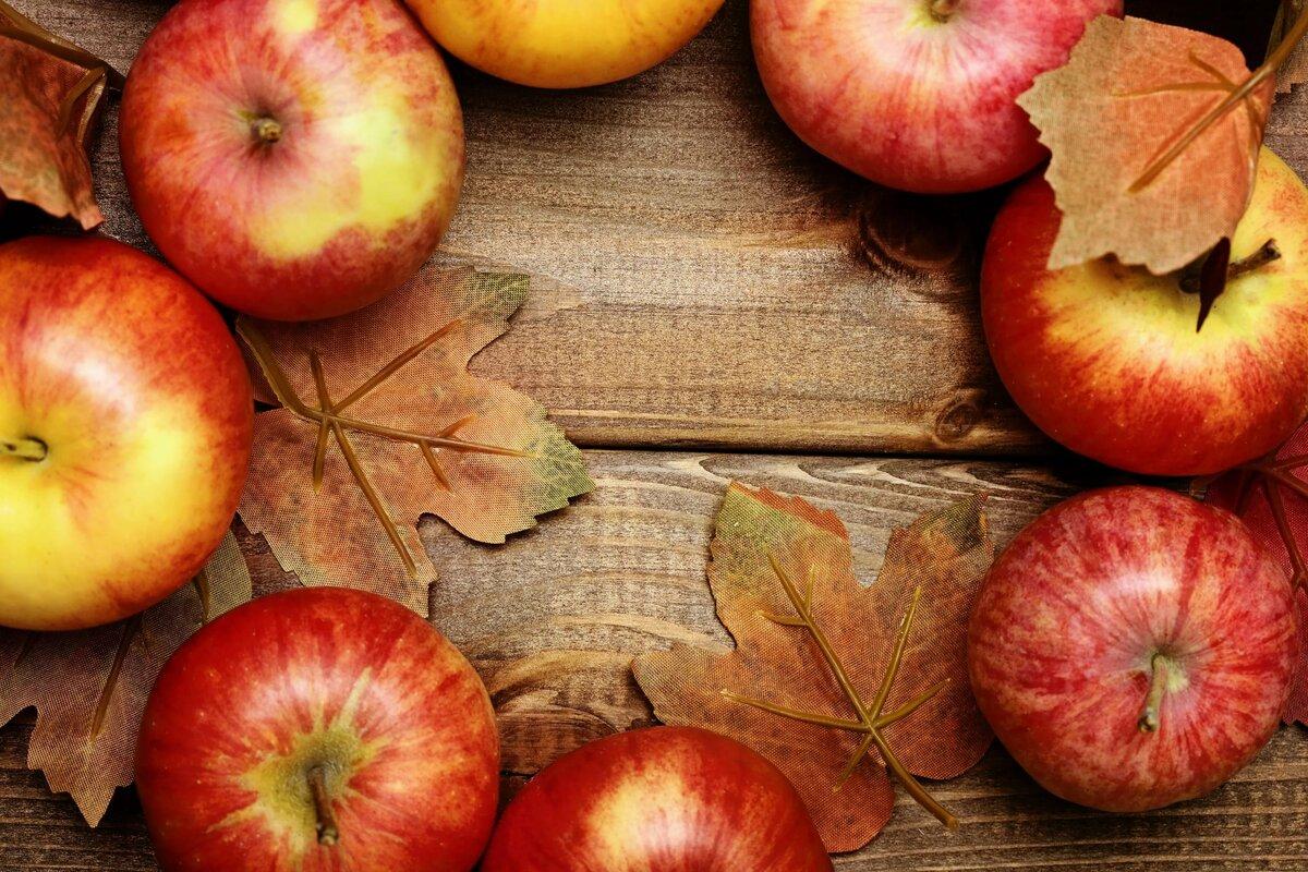Яблок в картинках клен