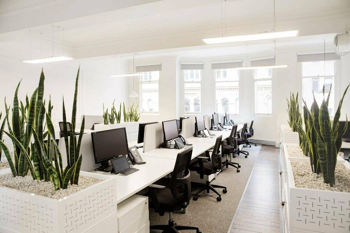 Примеры картинок для офиса
