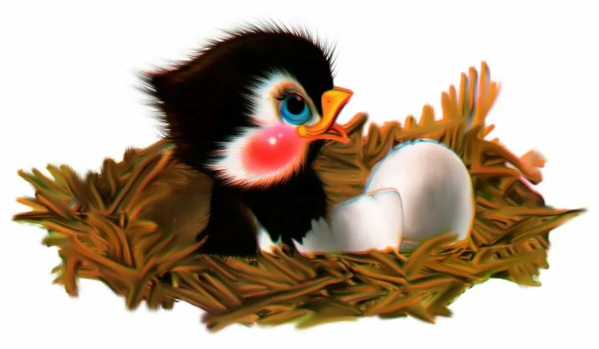 часто становился картинки птенчиков в доу более