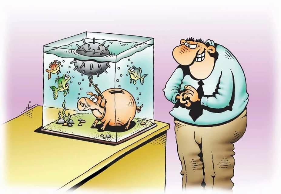 тяжелые смешные картинки про аквариумы особенностям внешних проявлений