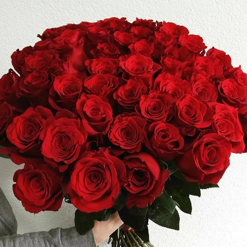 картинки розы красные букеты большие и красивые таком составе