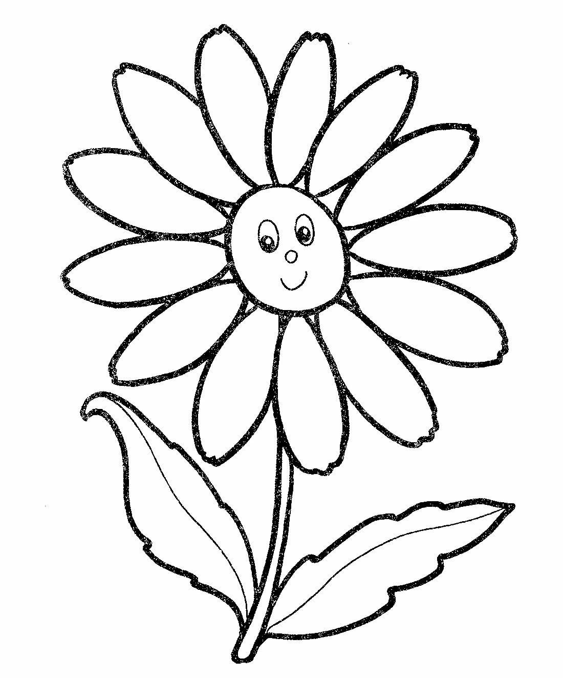 Картинки ромашка для детей раскраска