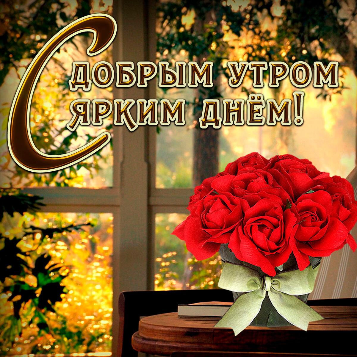 Февраля, картинки с цветами с добрым утром хорошего дня пожелания