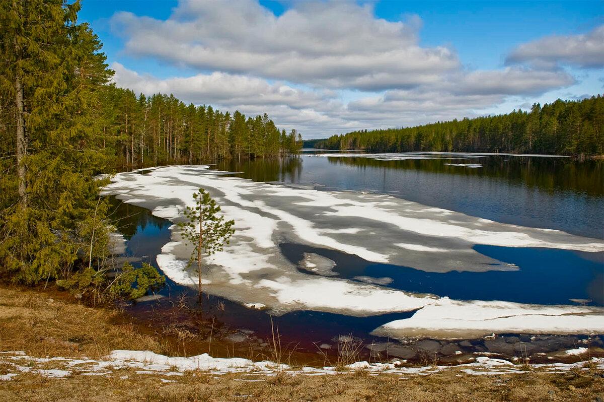 Картинки природа россии весной