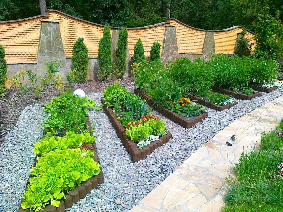 огород на садовом участке