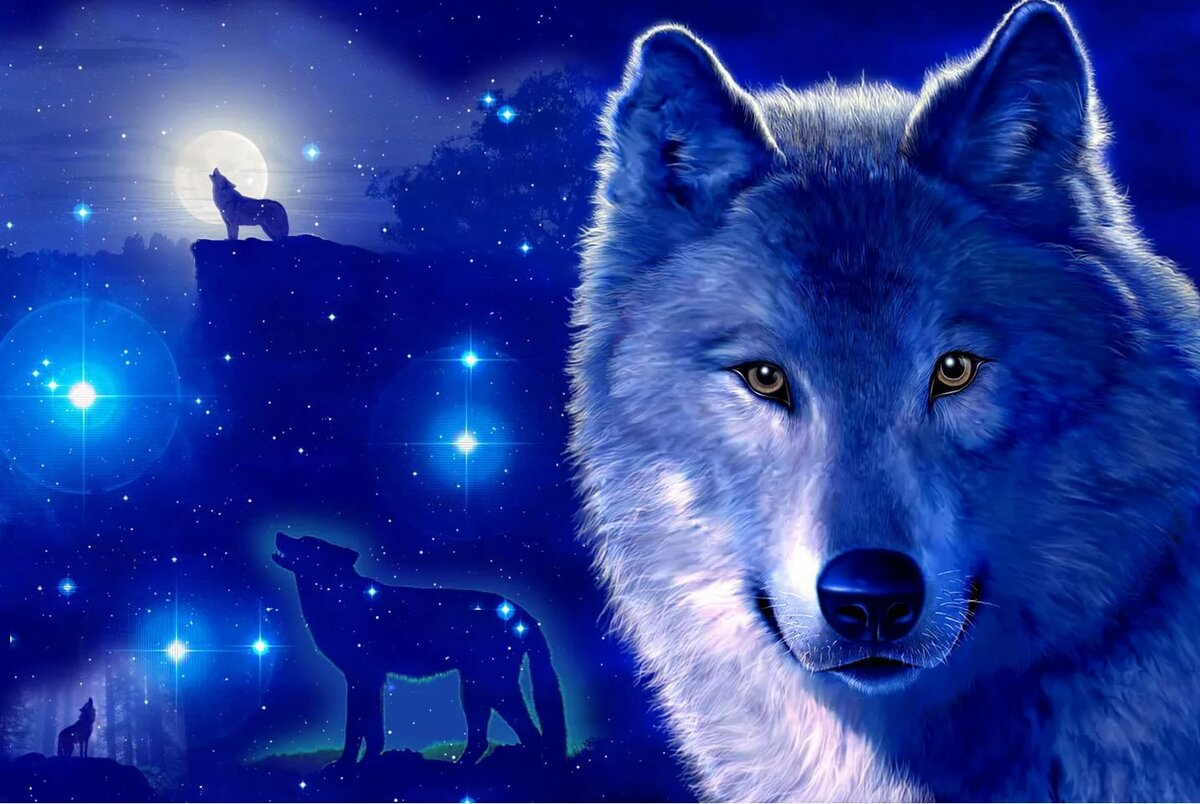 картинки про волков для обоев ещё его