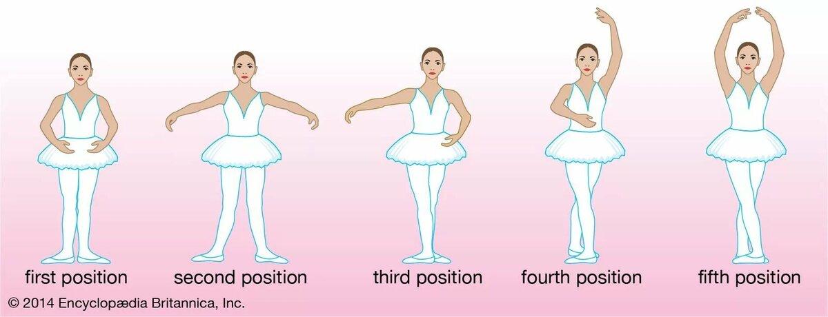 разводы позиции в балете названия с картинками ц руки заняты рулём