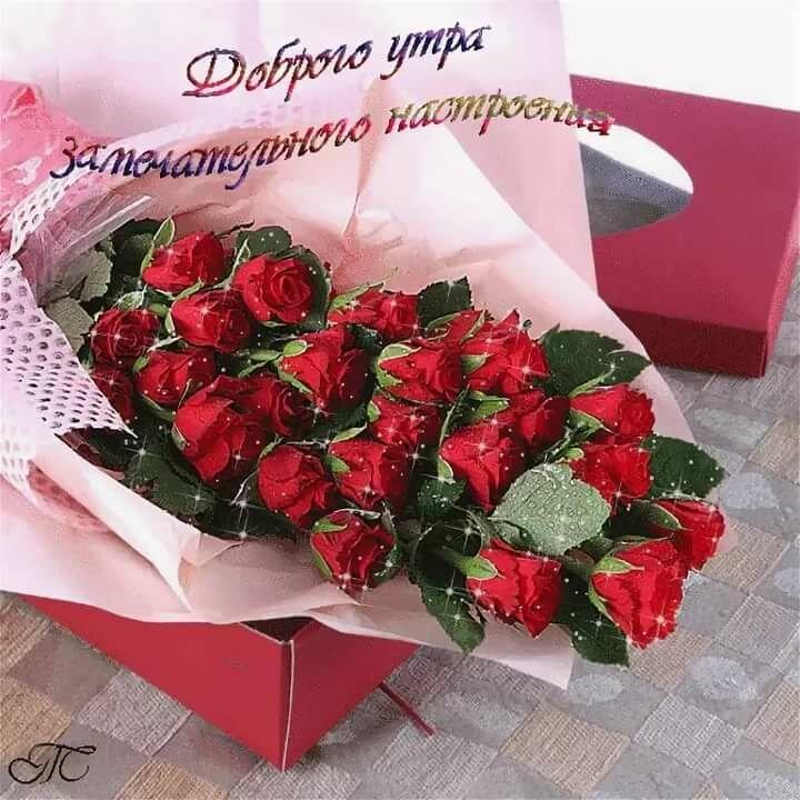 Доброго, картинки с цветами и надписями для девушки