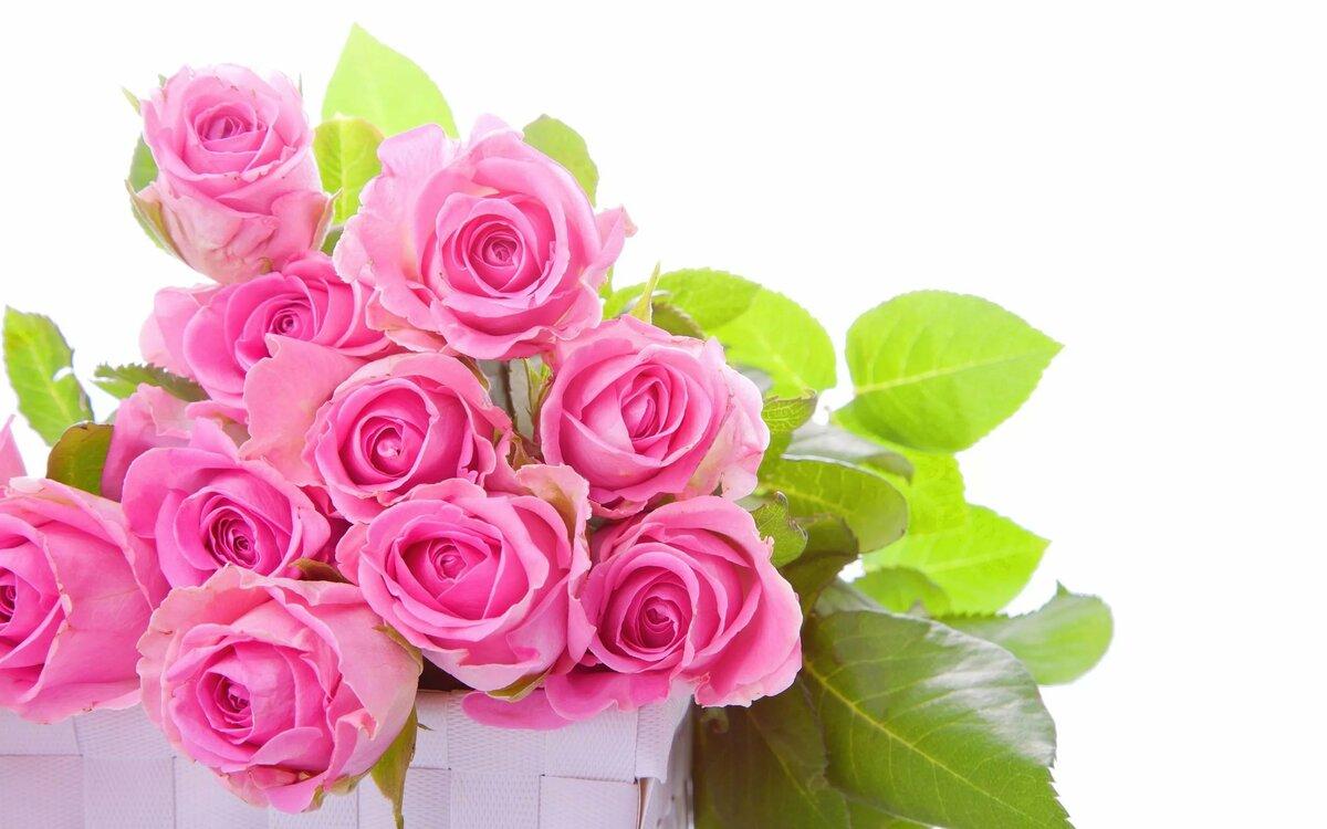 Красивые картинки с цветами поздравления, приветик тобой