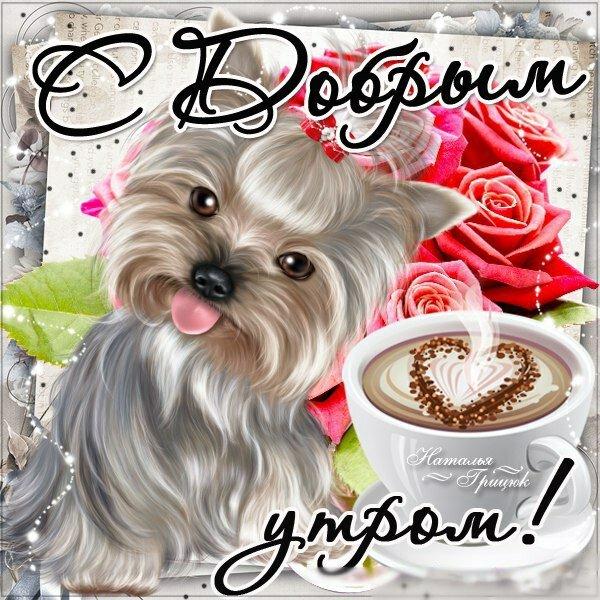 Картинки надписями, доброе утро картинки с собаками с надписью