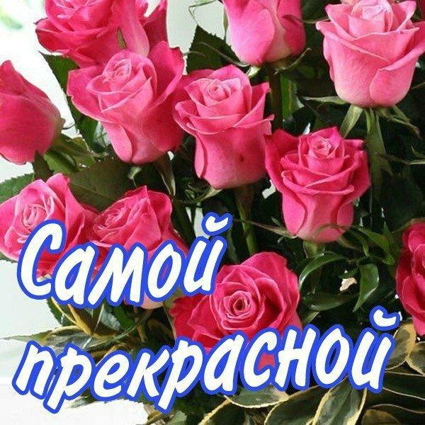 Картинки цветы ларисе, картона спб