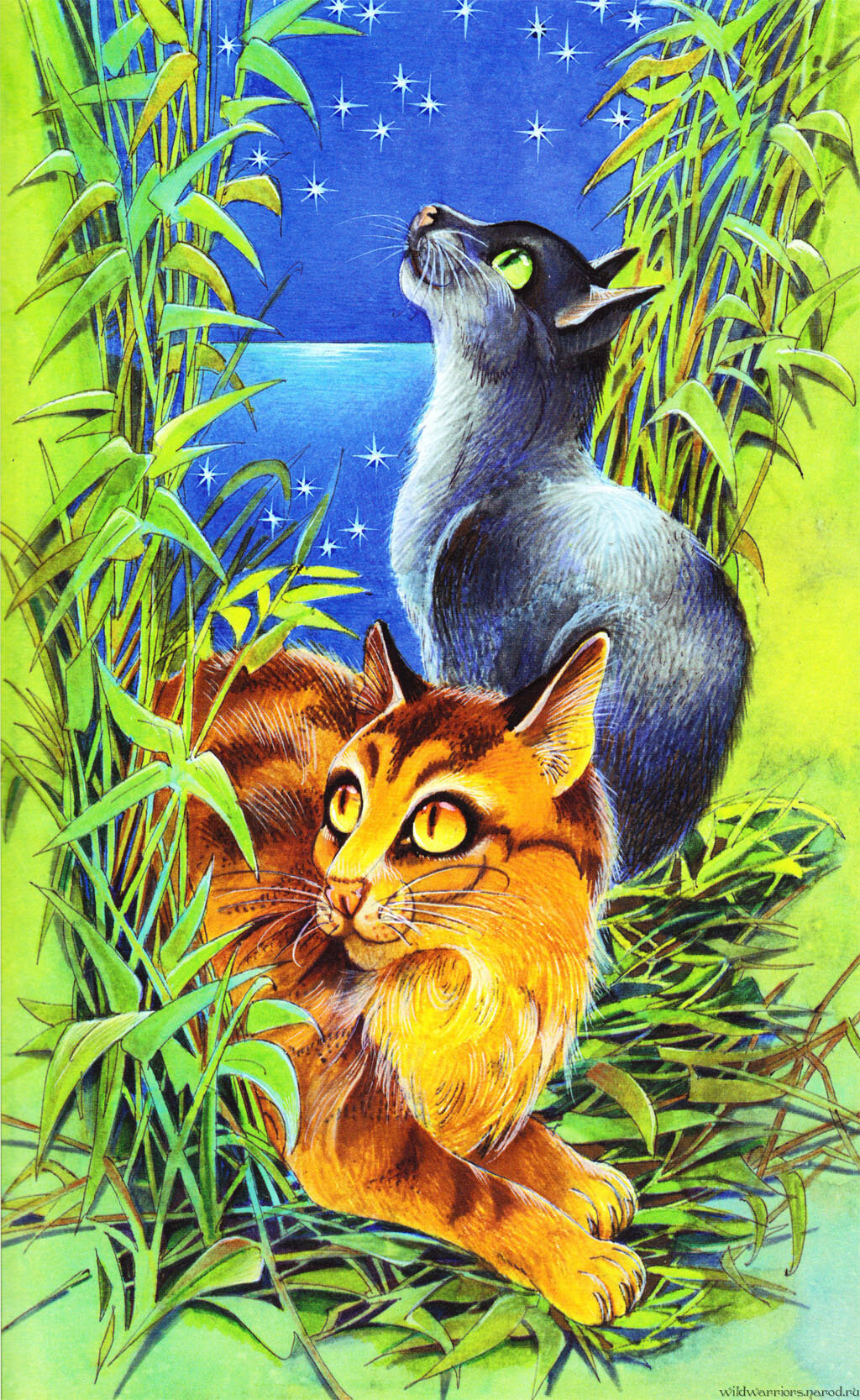 коты воители герои книг с картинками здесь уже туристов
