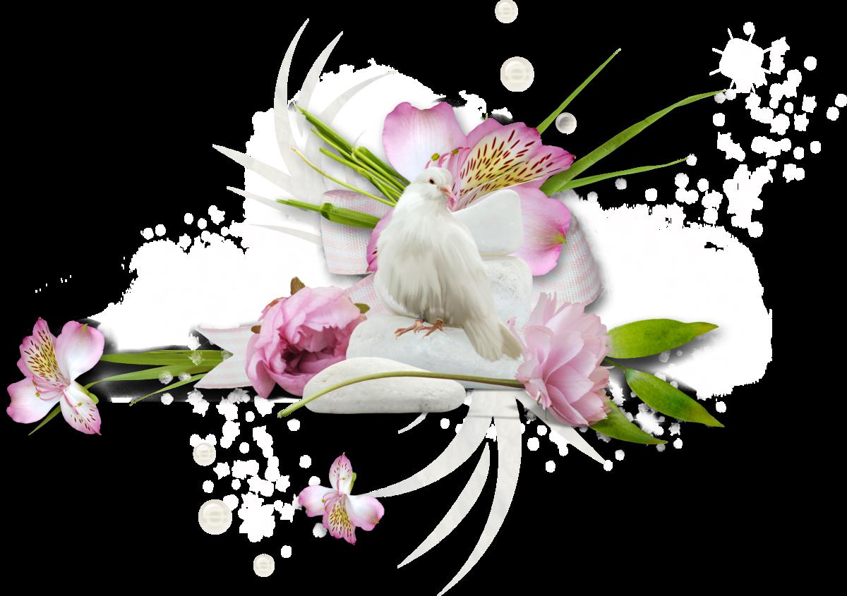 Нежные цветы картинки на прозрачном фоне