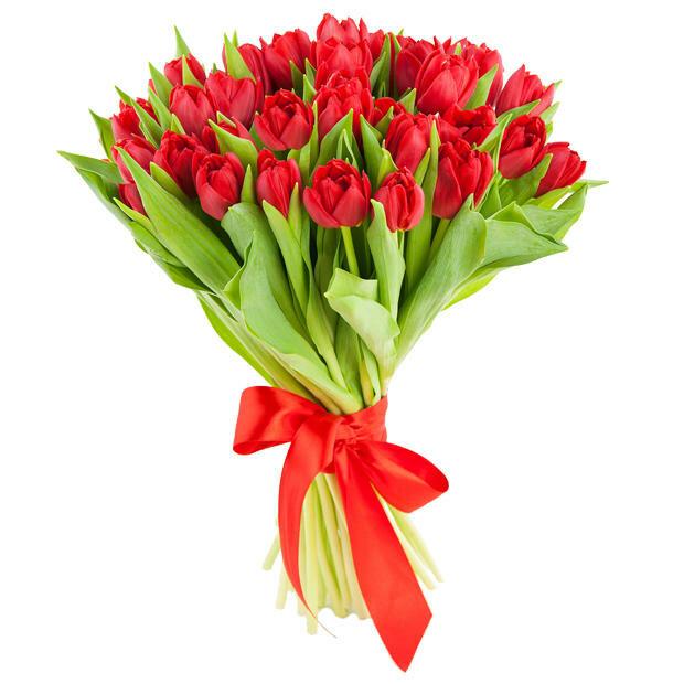 Букеты тюльпанов красных, букетах отзывы